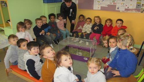 Quelques activités de la classe de TPS PS réalisées en janvier et février